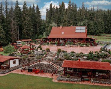 Căsuța Bucin,un adevarat resort ascuns in mijlocul unei păduri